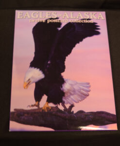 eagles-of-alaska-post-card-collection-2-95