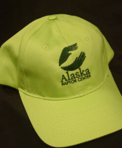 ladies-ball-cap-lime-green-22-99