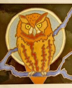 screech-owl-34-99